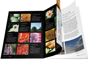 PDF365-booklet-example2