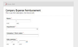 Company-Expense-Reimbursement-Form-250