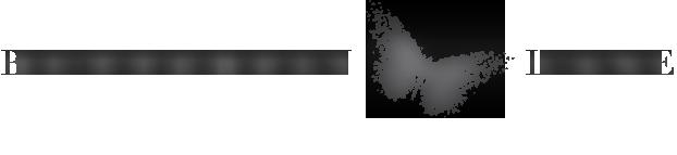 butterflylane-logo-space